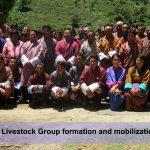 liv-grp-formation-training